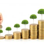 Setting Up Capital Asset Management